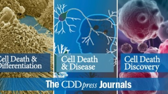 Cell Death and Disease 2020.jpg